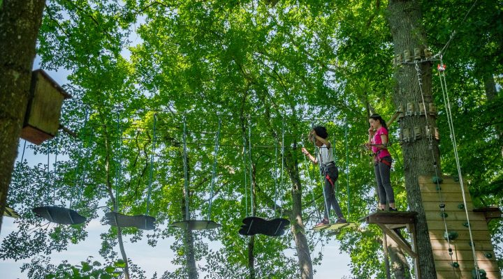 JUMPING FOREST JUIN 2019 (60)